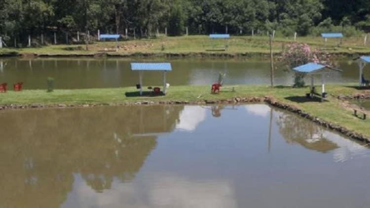 pesqueiros no rio grande do sul pesque pague nossa senhora aparecida passo fundo rs