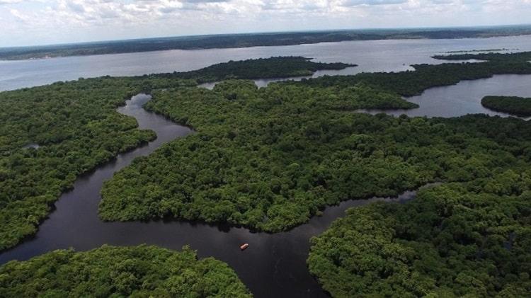 Rio Amazonas destinos de pesca