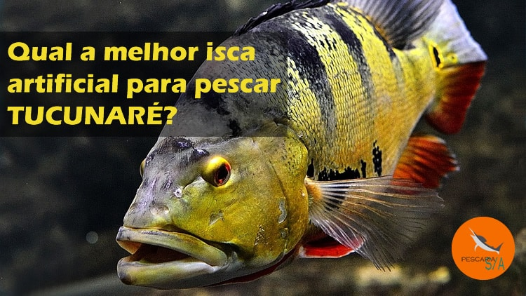 Qual a melhor isca artificial para pescar Tucunaré?