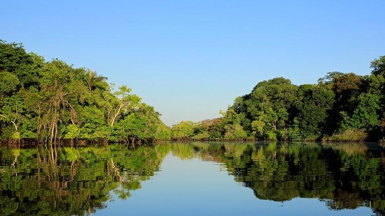 pesca américa do sul amazônia