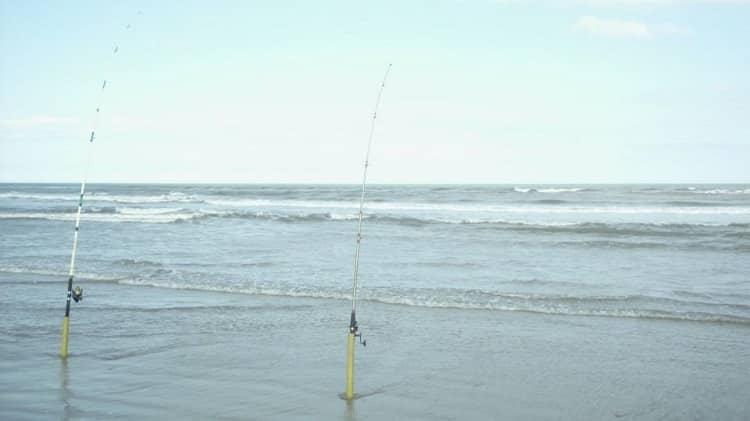 onde pescar em 2020 costão beira de praia