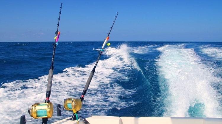 onde pescar em 2020 alto mar