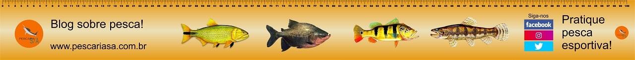 régua pescaria 1 metro imprimir