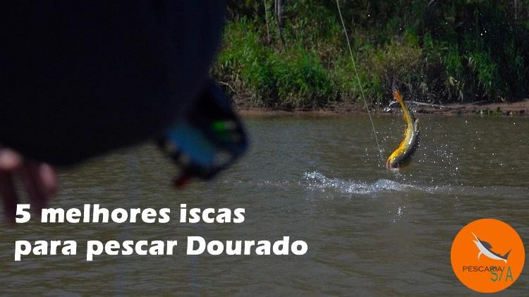5 melhores iscas para pescar Dourado