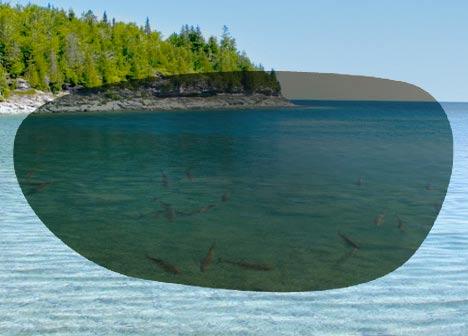 como funcionam os óculos de pesca polarizados na água