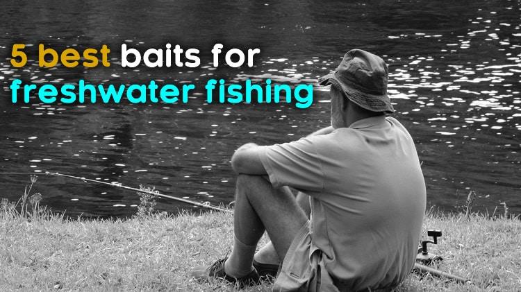 best baits for freshwater fishing