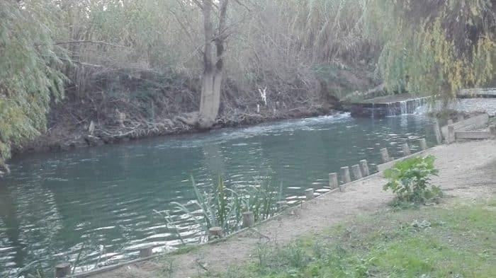 pesca de água doce em portugal rio almonda torres novas