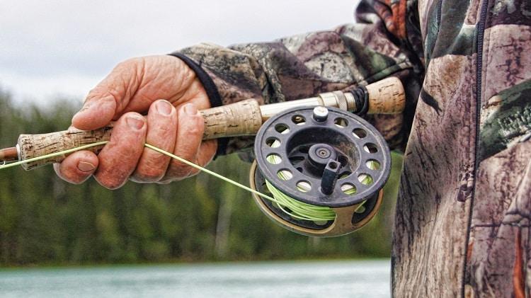Onde pescar Trutas no Brasil? Conheça 5 locais!