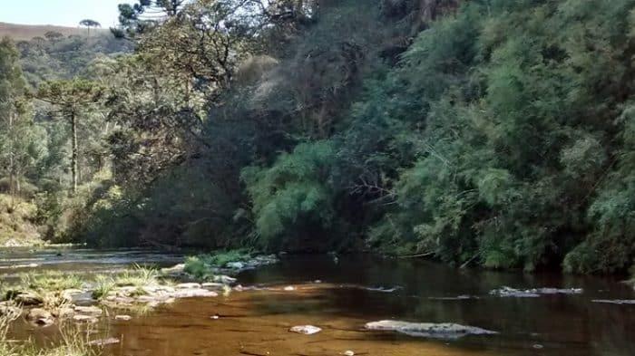 onde pescar trutas no brasil rio das antas são josé dos ausentes rs
