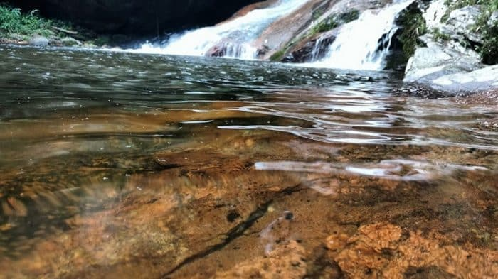 onde pescar trutas no brasil rio macaé nova friburgo rj