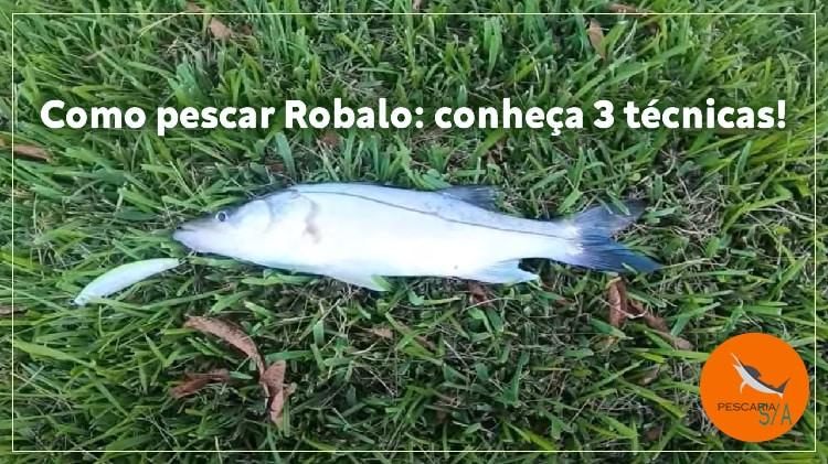 Como pescar Robalo: conheça 3 técnicas!