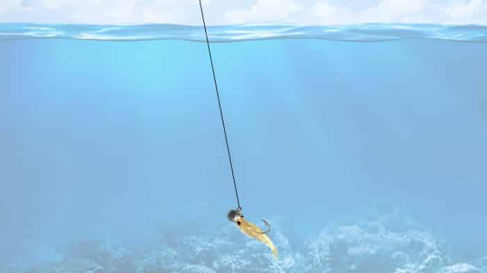 camarão artificial jig head