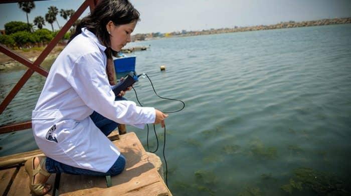 engenharia de pesca mercado de trabalho