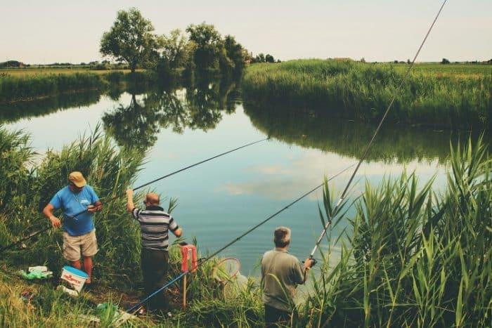dicas de pescaria raiz pesque sempre acompanhado